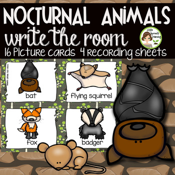 Nocturnal Animals Write the Room - 16 cards four versions, four recording sheets