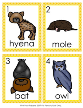 Nocturnal Animals Write the Room Activity