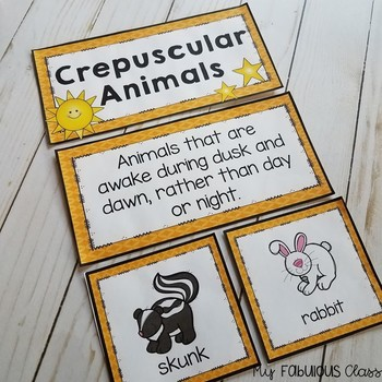 Nocturnal, Diurnal, Crepuscular Animals Mini Unit