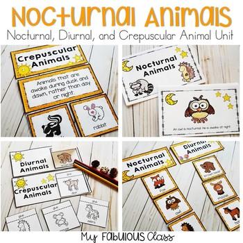 Nocturnal Animals Unit