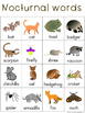 Nocturnal Animals Writing Center Words: Animal Words