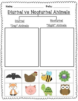 Nocturnal and Diurnal Animal Sort {Freebie}