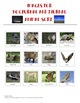 Nocturnal and Diurnal Animals Pack