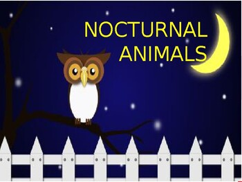 Nocturnal animals PowerPoint slide