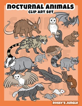 Nocturnal animals clip art set