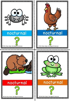 Nocturnal flash cards