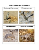 Nocturnal or Diurnal Desert animal sort