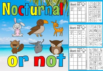 Nocturnal sort(50% off for 48 hours)
