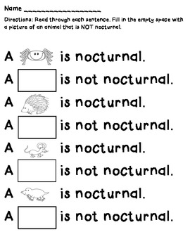 Nocturnal/Not Nocturnal Animal Worksheet