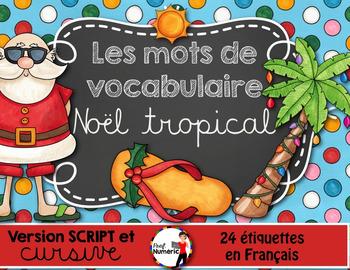 Noël tropical - Mots de vocabulaire /24 affiches (script et cursif)