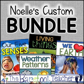 Noelle's Custom Bundle (Anyone can purchase.)