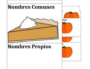 Nombres propios y comunes/ Proper nouns vs common nouns