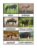Nomenclature Cards - Animals - Africa - Angola