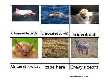 Nomenclature Cards - Animals - Africa - Djibouti