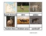 Nomenclature Cards - Animals - Africa - Egypt