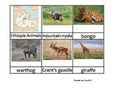 Nomenclature Cards - Animals - Africa - Ethiopia