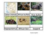 Nomenclature Cards - Animals - Africa - Gabon