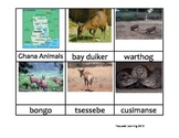 Nomenclature Cards - Animals - Africa - Ghana
