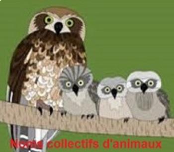 Noms collectifs d'animaux