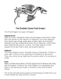 Non-Chronological report/ Information Text - Dragons