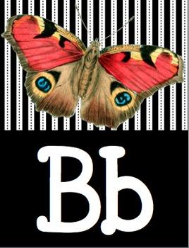 Non Fiction Alphabet Posters