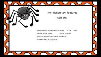 Non-Fiction: BATS! BUNDLE