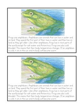 Nonfiction Book- A Frog's Life