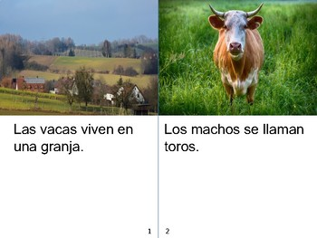Non-Fiction Book in Spanish Level C - Las vacas