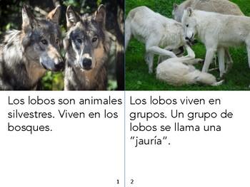 Non-Fiction Book in Spanish Level E - Los lobos