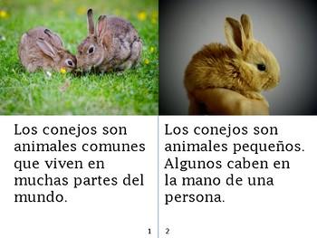 Non-Fiction Book in Spanish Level E - Los conejos