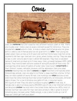 Non-Fiction Fluency Builders Animals Set 2