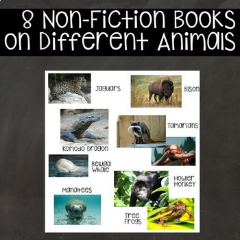 Nonfiction Mini Readers- Unusual Animals