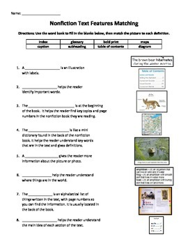 Non-Fiction Non Fiction Text Features Matching Worksheet Activity ...