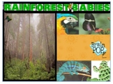Non-Fiction Rainforest Animals Flipchart for ActivBoards