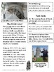 Non-Fiction Reading Passage: The Leaning Tower of Pisa
