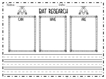 Bats-Animal Research Report