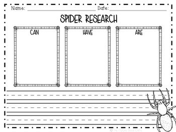 Animal Research-Spiders