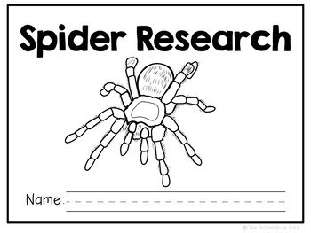 Spiders-Animal Research Report