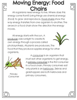 Non-Fiction Science Readers: Food Chains, Food Webs, and Energy Pyramids