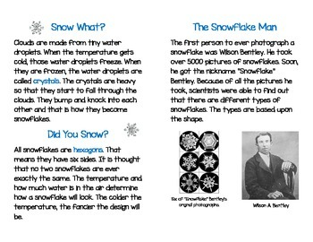 Non-Fiction Snowflake Guided Reading Book with Snowman Organizer