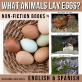 Non-Fiction Spanish Reader ¿Qué animales ponen huevos? - What animals lays eggs?