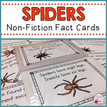 Spider Fact Cards