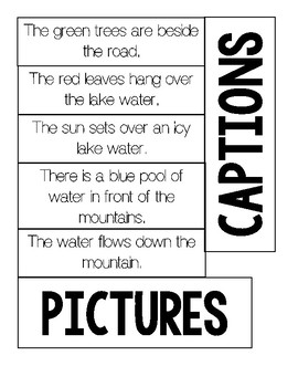 Non-Fiction Text Features:  Caption vs. Picture Sort