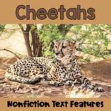 Nonfiction Text Features: Cheetahs