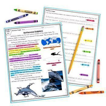 Nonfiction Text Features: Images - RI.2.7 & RI.3.7 - Google Distance Learning