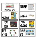 MORE Non-Fiction Text Features Packet SET TWO!