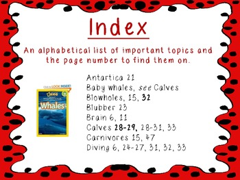 Non-Fiction Text Features Posters-Reading