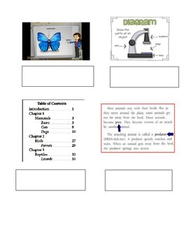 Non Fiction Text Features Practice