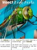 Insects Nonfiction Passages and Text Dependent Questions