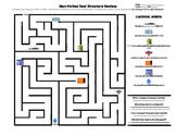 Non-Fiction Text Structure Review Maze